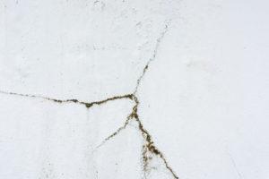 Babské rady na pleseň na stene nefungujú