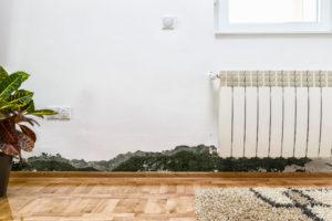 Odstraňování plísní a řas ze zateplené fasády Praha 10