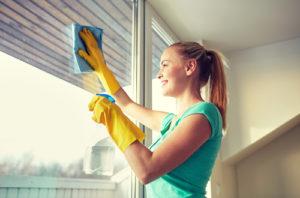 mytí oken - profesionální firma
