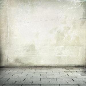 LSG nátěr – odolnost vůči plísním a kvasinkám