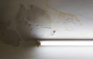 Jak odstranit plíseň na stropě
