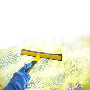 Mytí skleníků