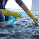 cena čištění koberců