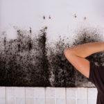 Dezinfekcia plesní v dome