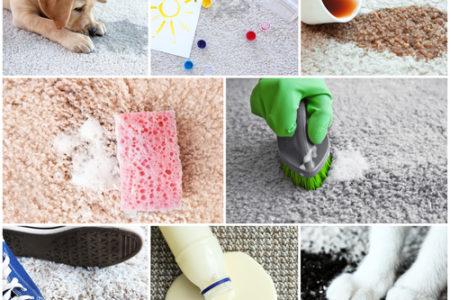 Pomocí strojového čištění Pardubice dokážete vyčistit veškeré nečistoty zvašeho koberce