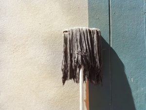 černá plíseň na fasádě
